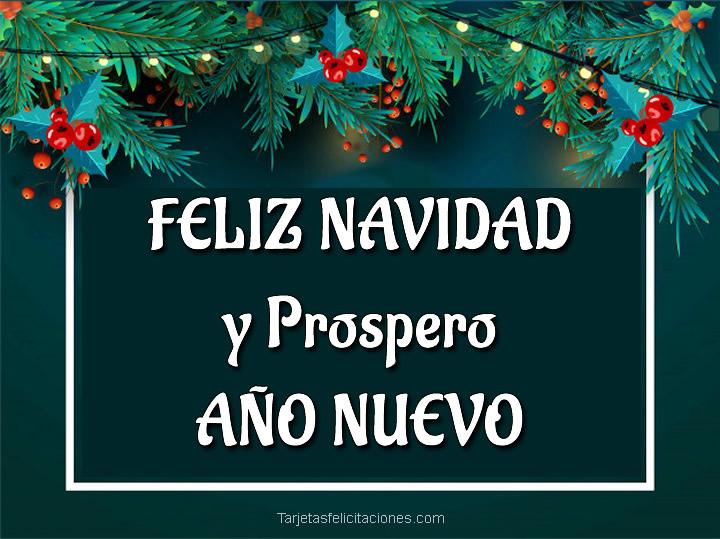 Dedicatorias de Feliz navidad y Prospero Año Nuevo para felicitar